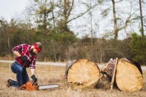 tree removal regulations man cutting down tree - brockley tree